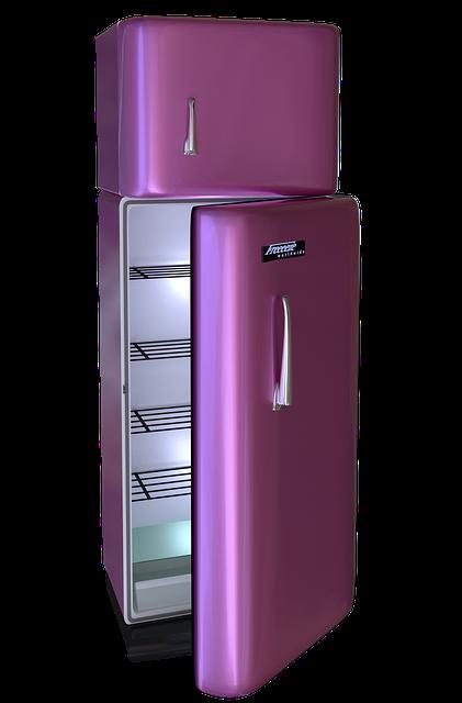 Qu'est-ce qu'un réfrigérateur vintage ?